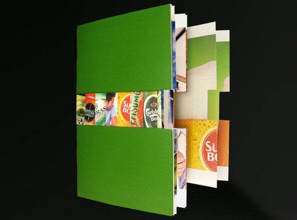 examples of brochure designs