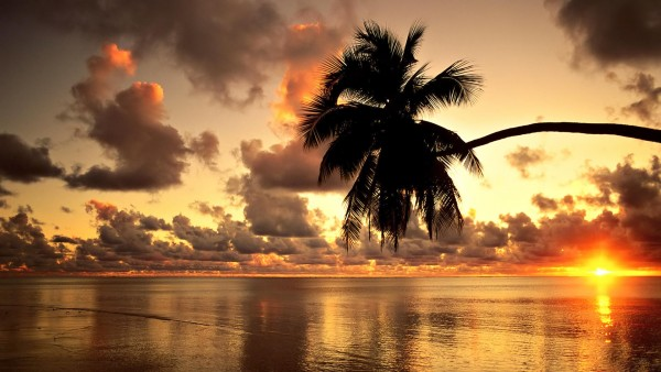 Hawaii Beach HD Wallpaper
