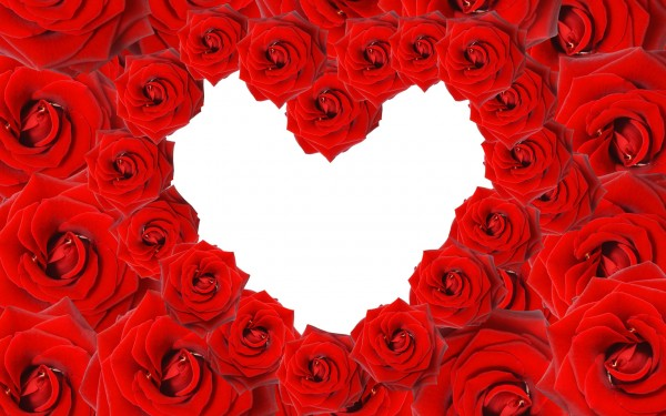 red roses love image