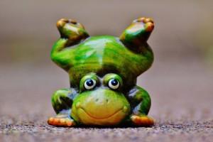 Summersalt Frog