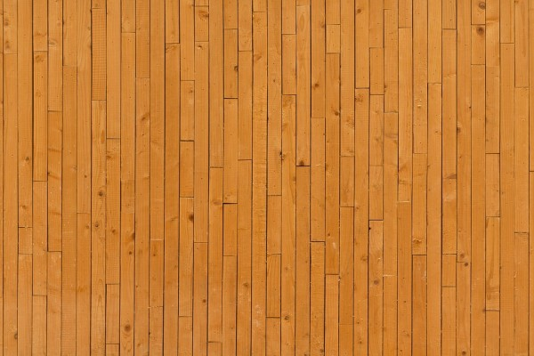 Wild Hardwood background