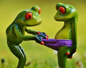 frogs Underpants